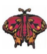 """28"""" SH Monarch Butterfly"""