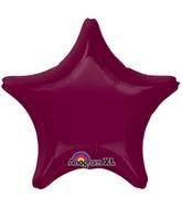 "18"" Berry Decorator Star"