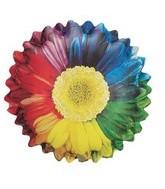 """26"""" Rainbow Sunflower Balloon"""